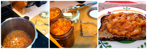 Post image for Vegan MoFo 2013 VIDEO #9: More on the Pressure Cooker (Peachy Buttery Jam-ish recipe)