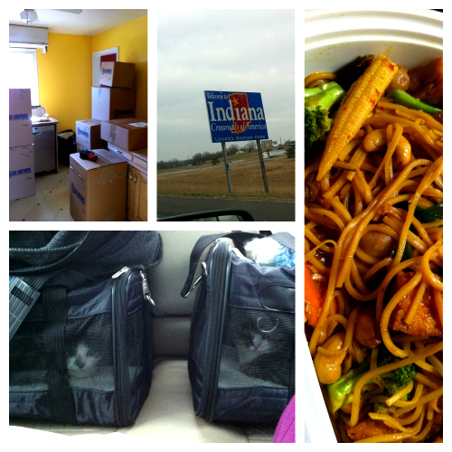 Post image for A vegan, her husband and two cats go on a road trip…